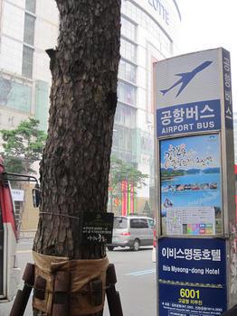 Seoul13sept165.jpg